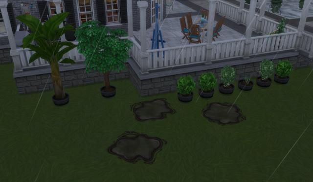 PN Garden